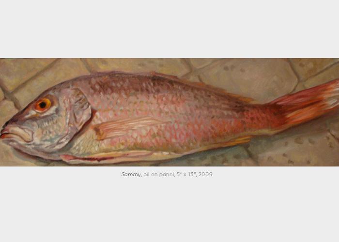 11fish
